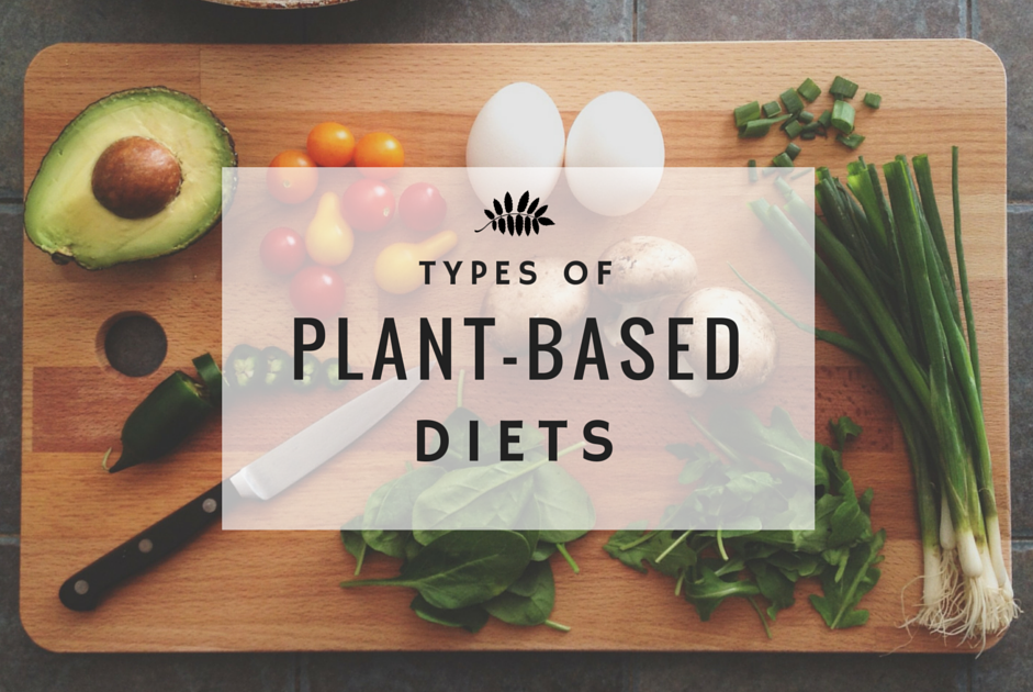 TYPES OF PLANT-BASED DIETS